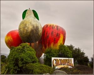 Fruit Town, Cromwell