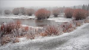 Snowing at Tekapo