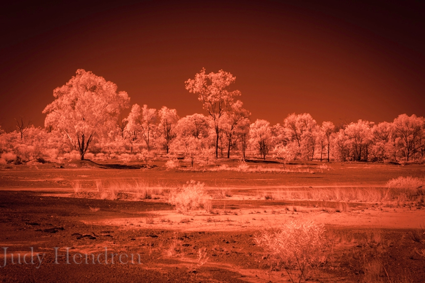 _MG_6836Springsure Infrared